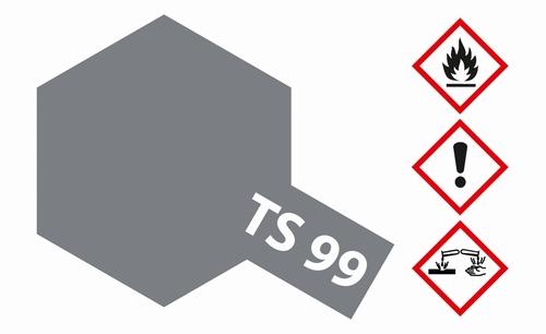 TS-99 grijs mat  100 ml