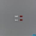 Knipperlichten Rood 2 stuks